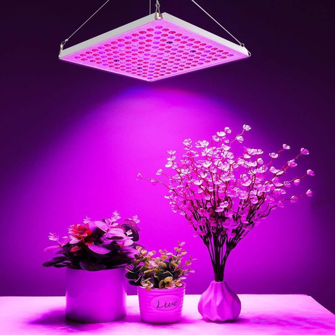 Lampe Energie Solaire Interieur la meilleure lampe pour plante - zone led